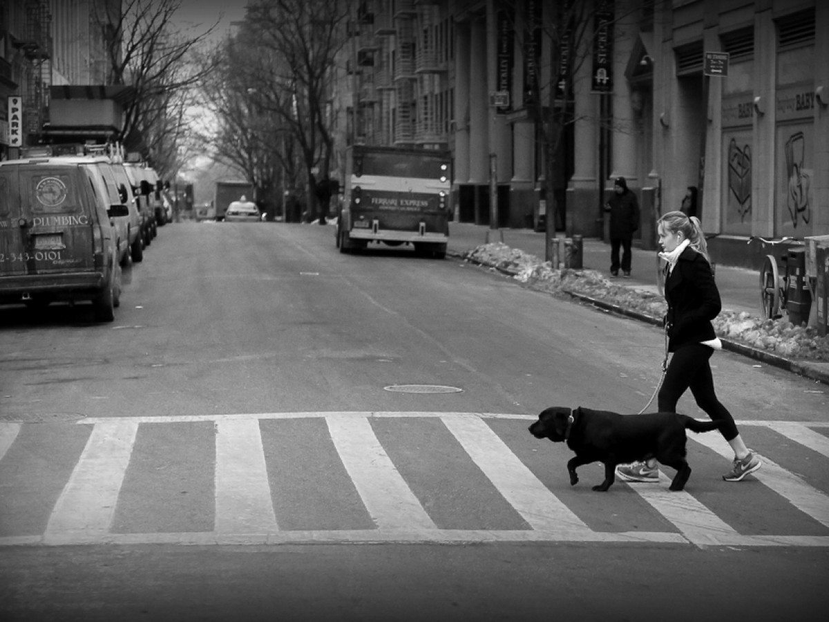 FOTO CALLEJERA (STREET PHOTOGRAPHY)