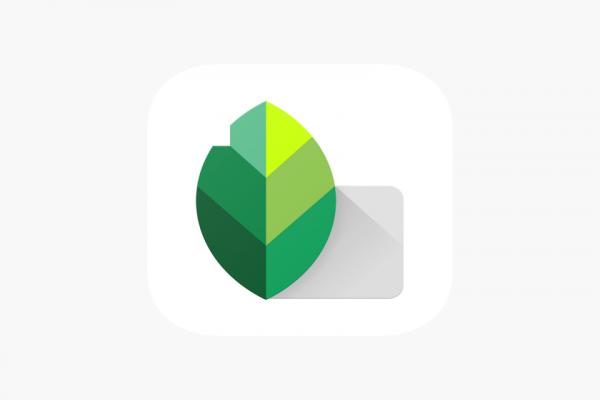 Snapseed: Editor de fotografía para el celular